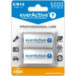 2x everActive Professional Line C R14 5000mAh 1.2V Low Self Discharge (LSD) Ni-MH rechargeable batteries, 2 pc., blister